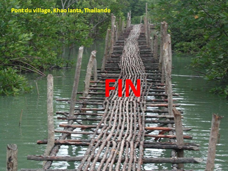 Pont du village, Khao lanta, Thailande