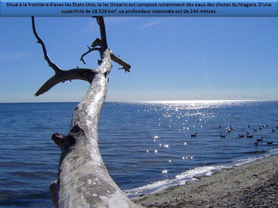 Situé à la frontière d avec les États-Unis, le lac Ontario est composé notamment des eaux des chutes du Niagara.