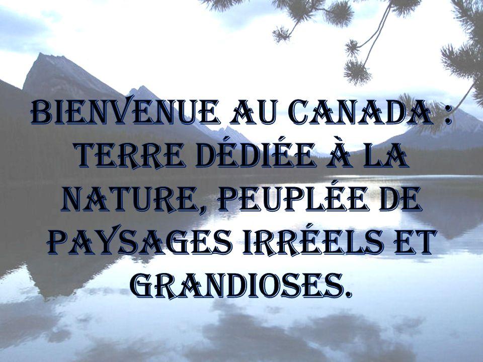 Bienvenue au Canada : terre dédiée à la nature, peuplée de paysages irréels et grandioses.
