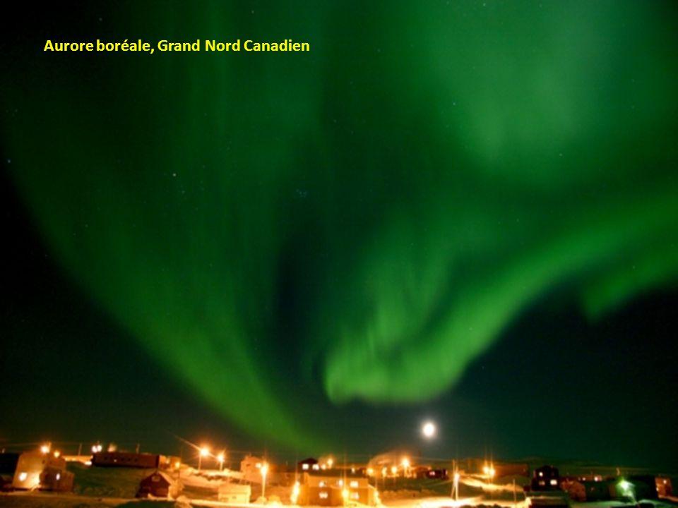 Aurore boréale, Grand Nord Canadien