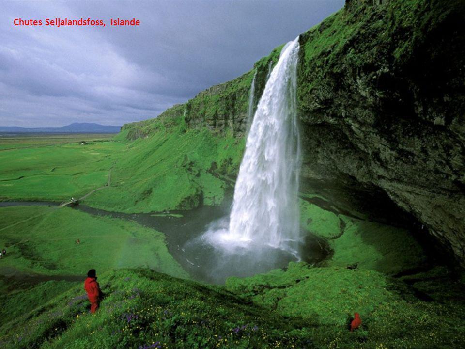 Chutes Seljalandsfoss, Islande