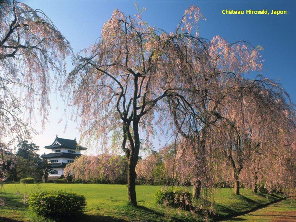 Château Hirosaki, Japon