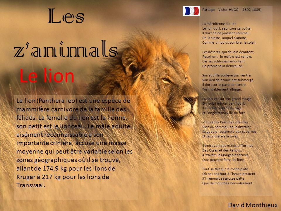 Les z'animals Partager Victor HUGO (1802-1885) La méridienne du lion. Le lion dort, seul sous sa voûte.