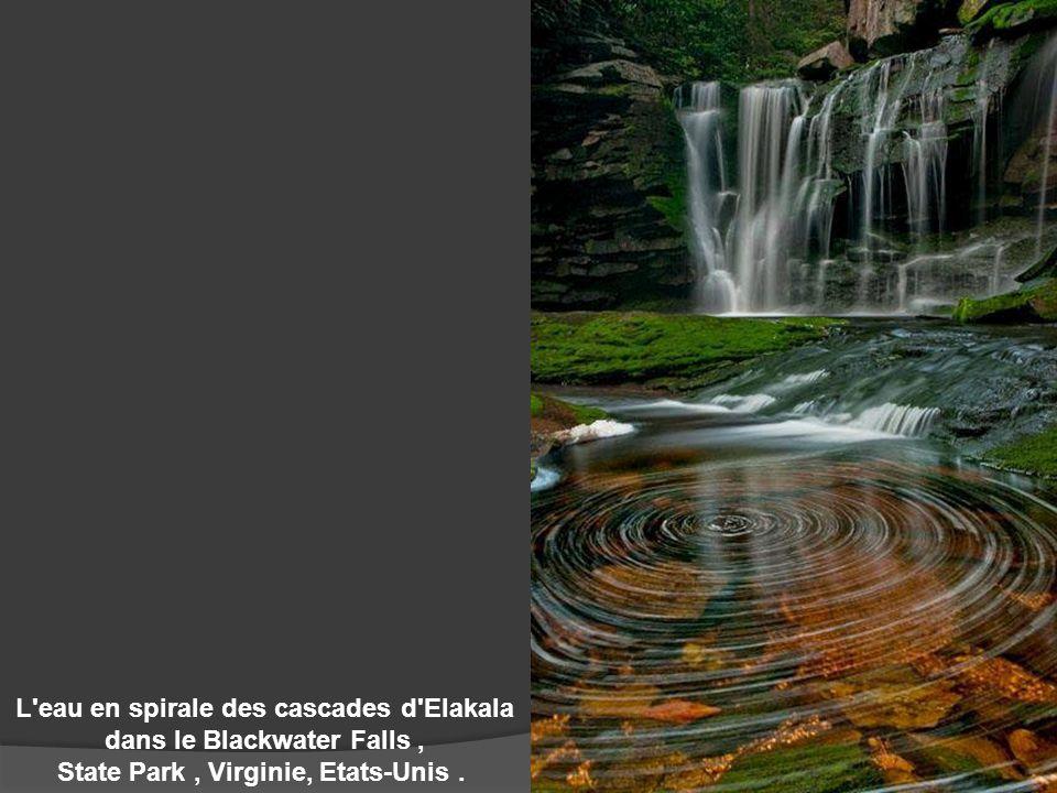 L eau en spirale des cascades d Elakala dans le Blackwater Falls ,