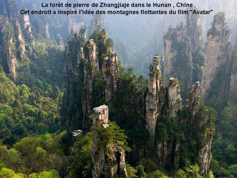 La forêt de pierre de Zhangjiaje dans le Hunan , Chine .