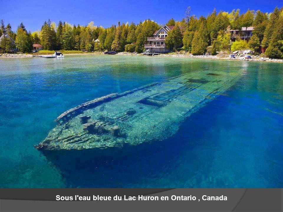 Sous l eau bleue du Lac Huron en Ontario , Canada