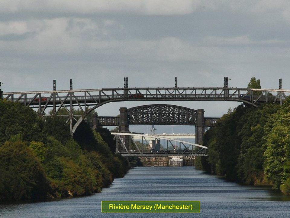 Rívière Mersey (Manchester)