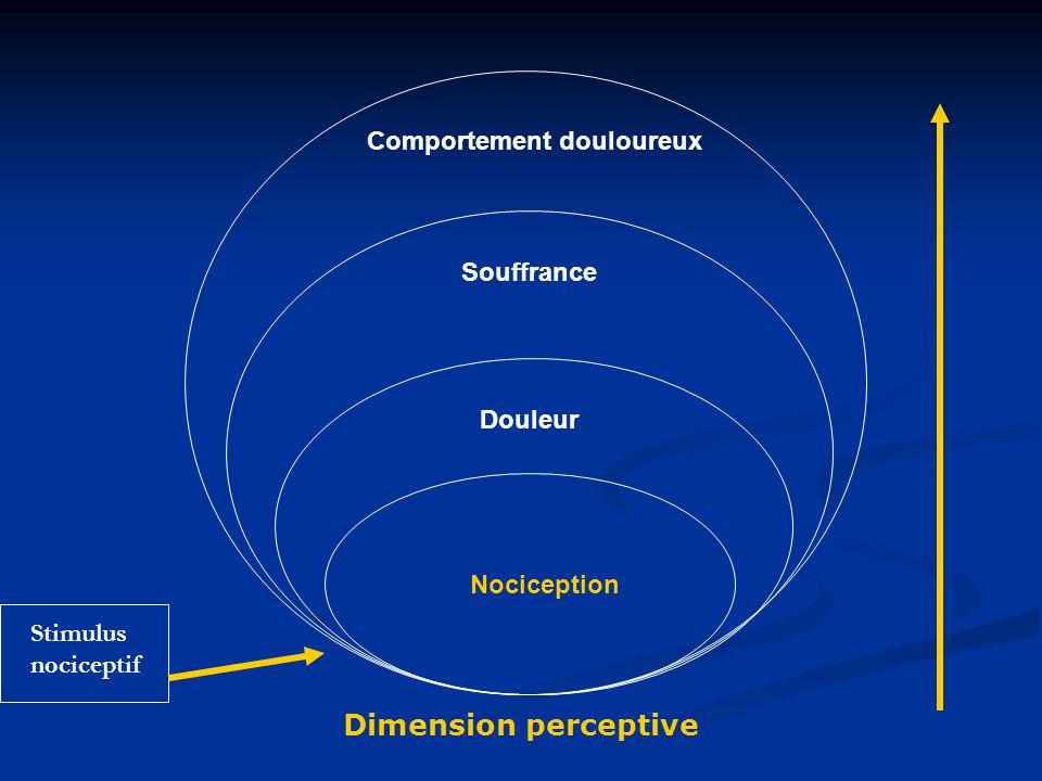 Dimension perceptive Comportement douloureux Souffrance Douleur