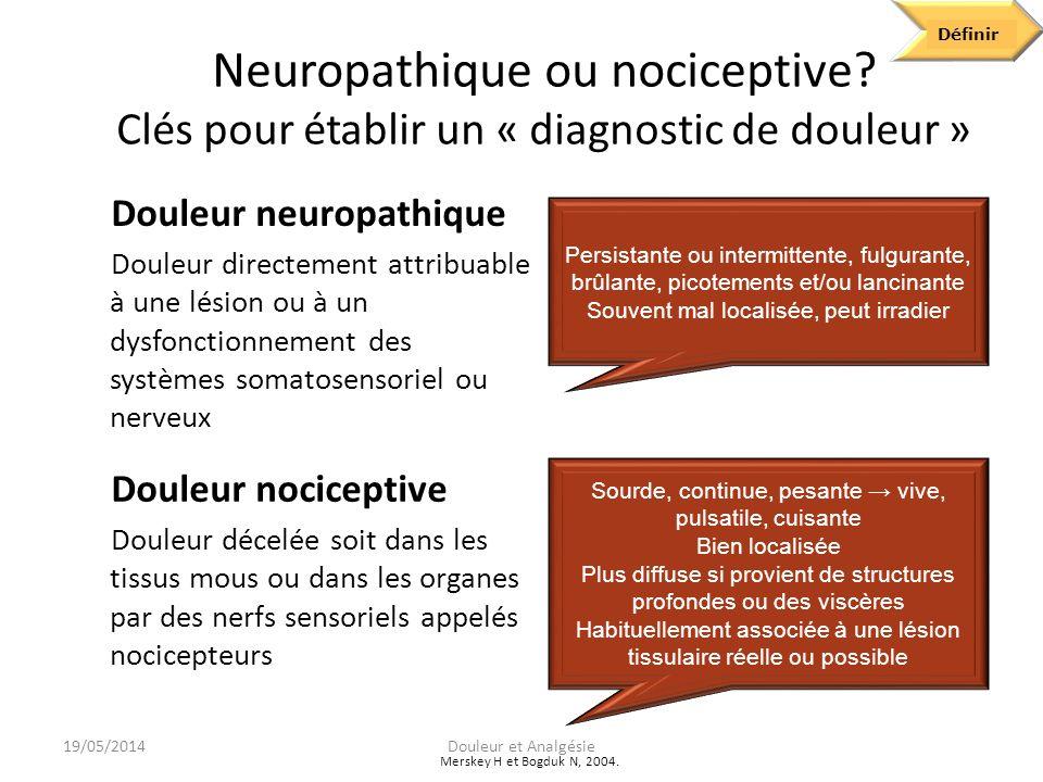 Define Définir. Neuropathique ou nociceptive Clés pour établir un « diagnostic de douleur » Douleur neuropathique.