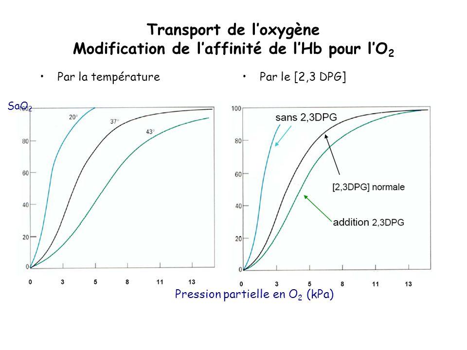 Transport de l'oxygène Modification de l'affinité de l'Hb pour l'O2