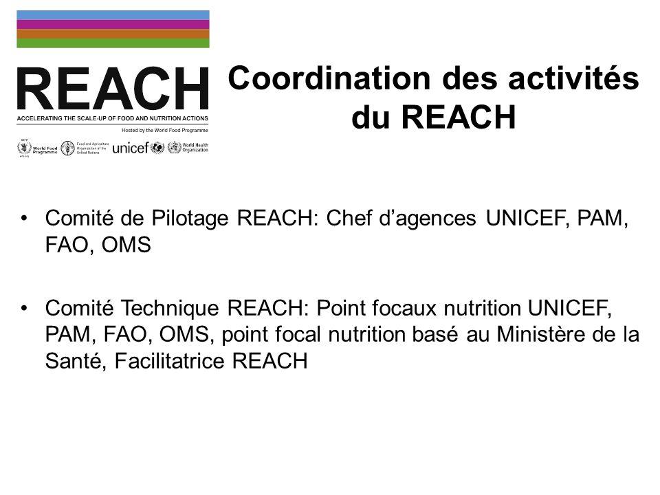 Coordination des activités du REACH