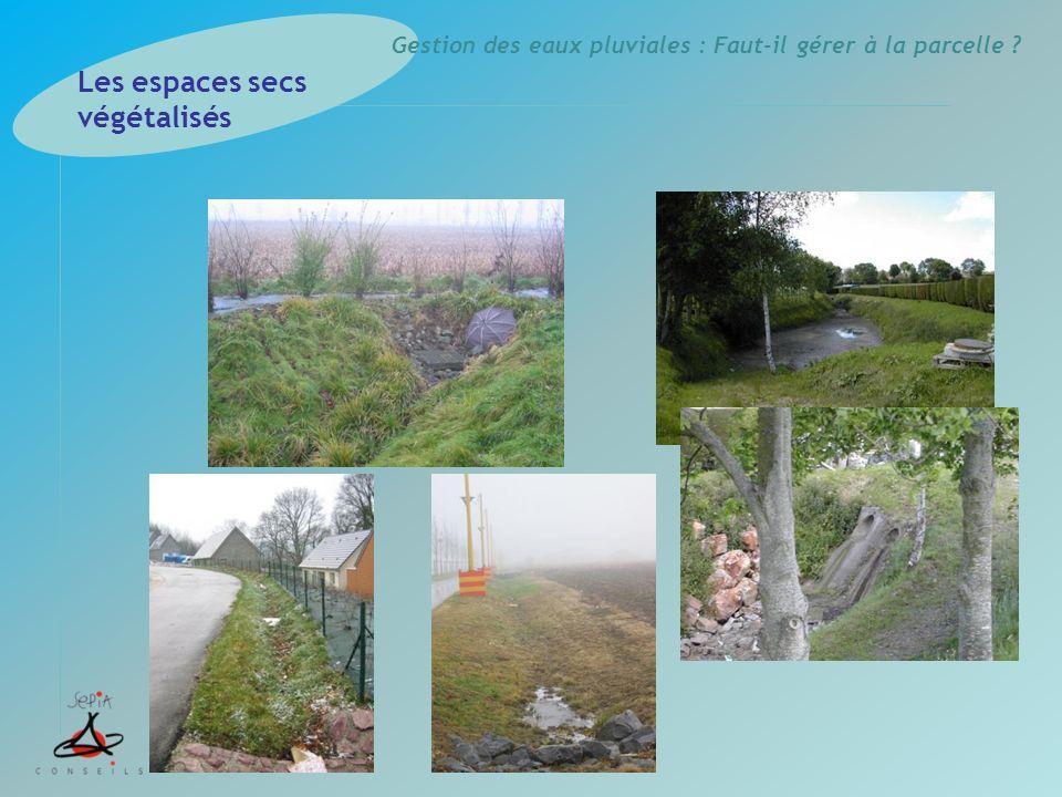 Les espaces secs végétalisés