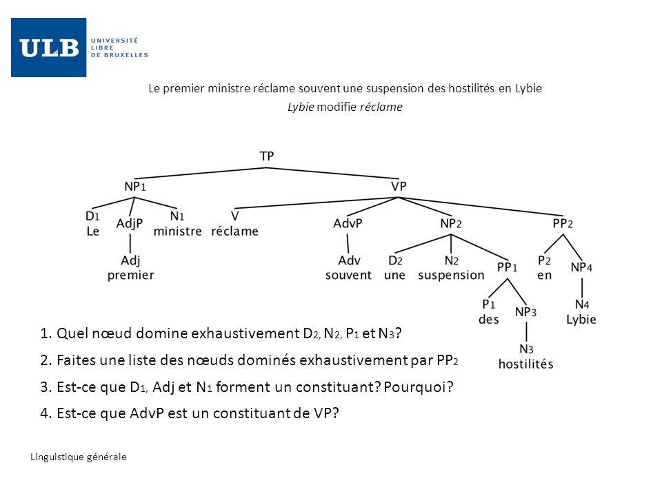 1. Quel nœud domine exhaustivement D2, N2, P1 et N3