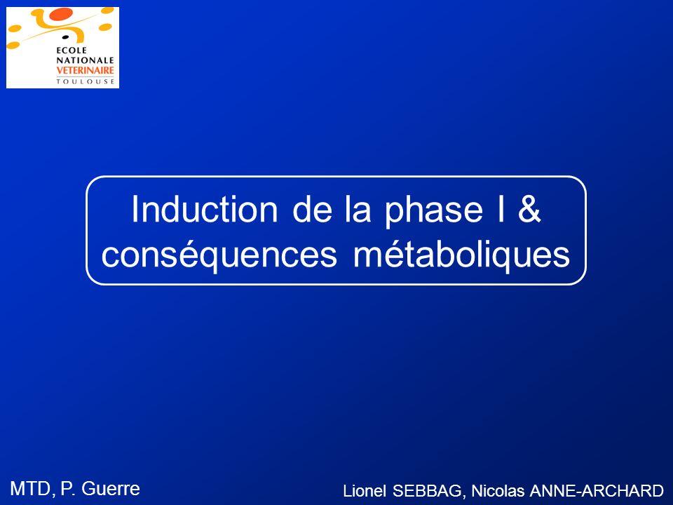 Induction de la phase I & conséquences métaboliques