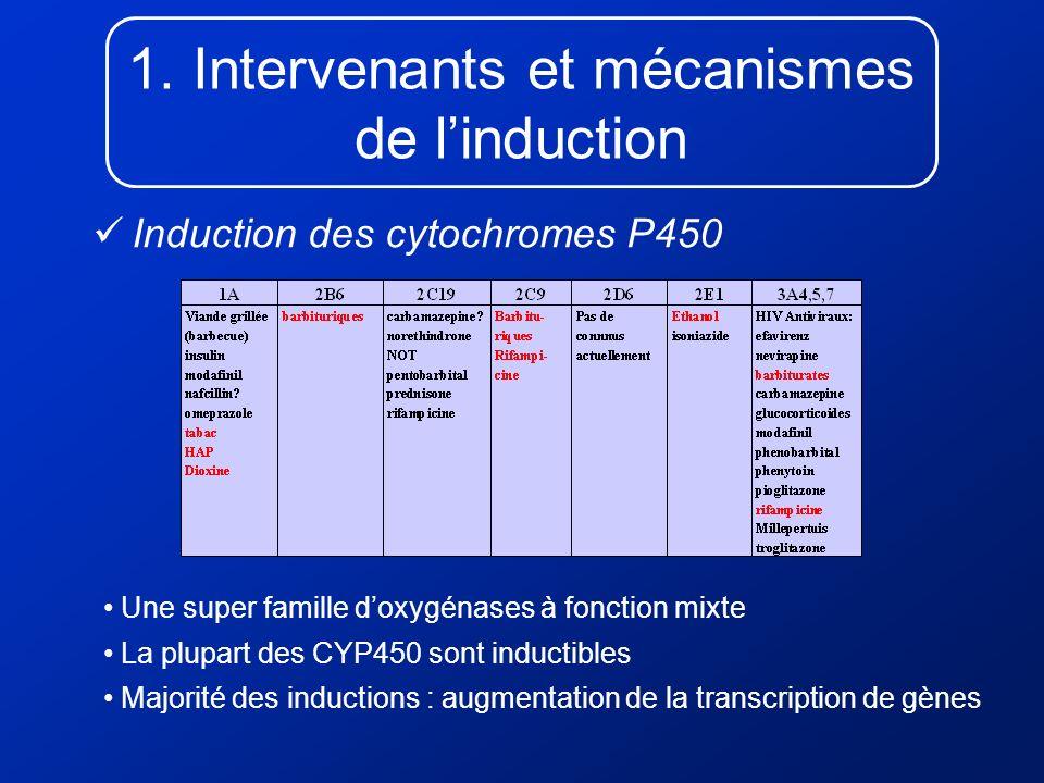 Intervenants et mécanismes