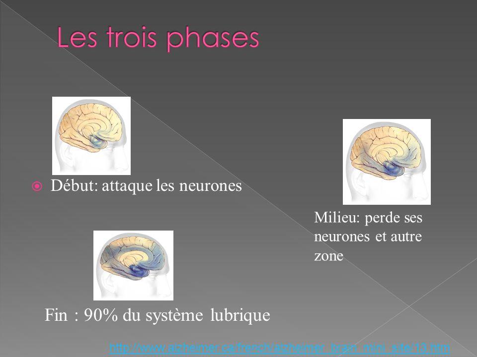 Les trois phases Fin : 90% du système lubrique