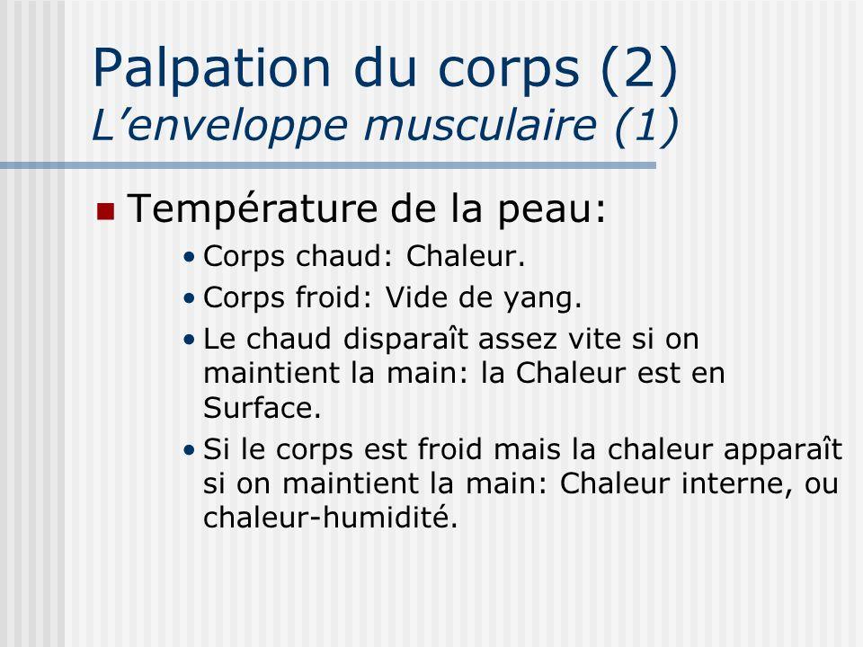 Palpation du corps (2) L'enveloppe musculaire (1)
