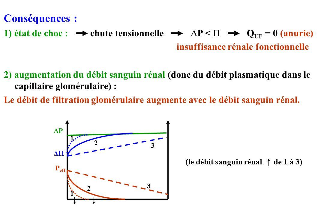 Conséquences : 1) état de choc : chute tensionnelle P <  QUF = 0 (anurie) insuffisance rénale fonctionnelle.
