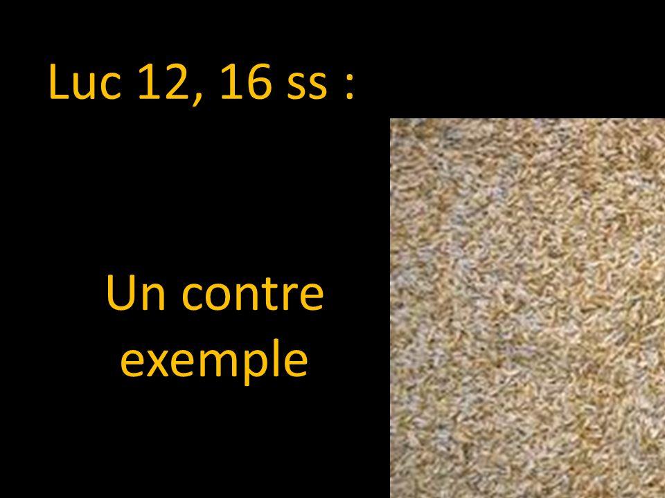 Luc 12, 16 ss : Un contre exemple