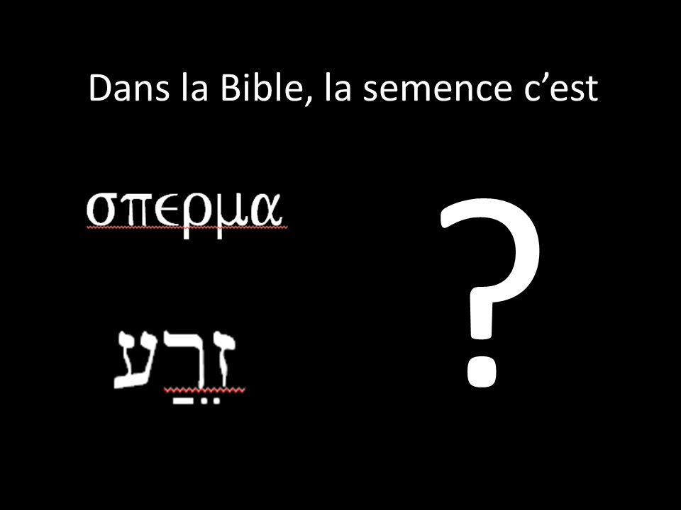 Dans la Bible, la semence c'est