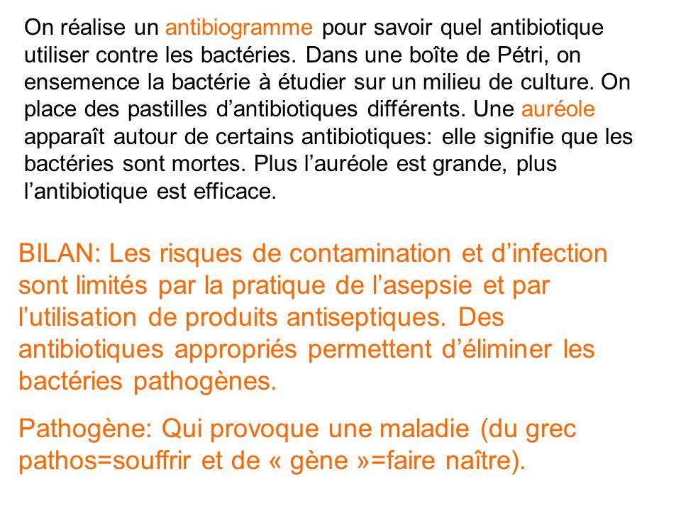 On réalise un antibiogramme pour savoir quel antibiotique utiliser contre les bactéries. Dans une boîte de Pétri, on ensemence la bactérie à étudier sur un milieu de culture. On place des pastilles d'antibiotiques différents. Une auréole apparaît autour de certains antibiotiques: elle signifie que les bactéries sont mortes. Plus l'auréole est grande, plus l'antibiotique est efficace.