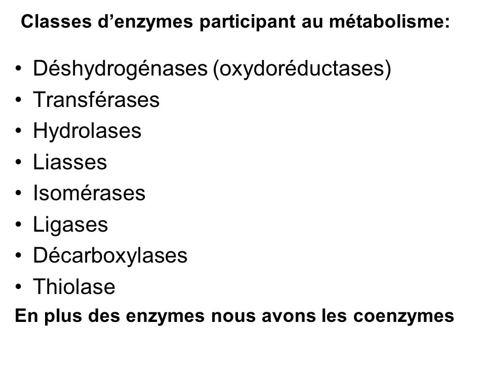 Classes d'enzymes participant au métabolisme: