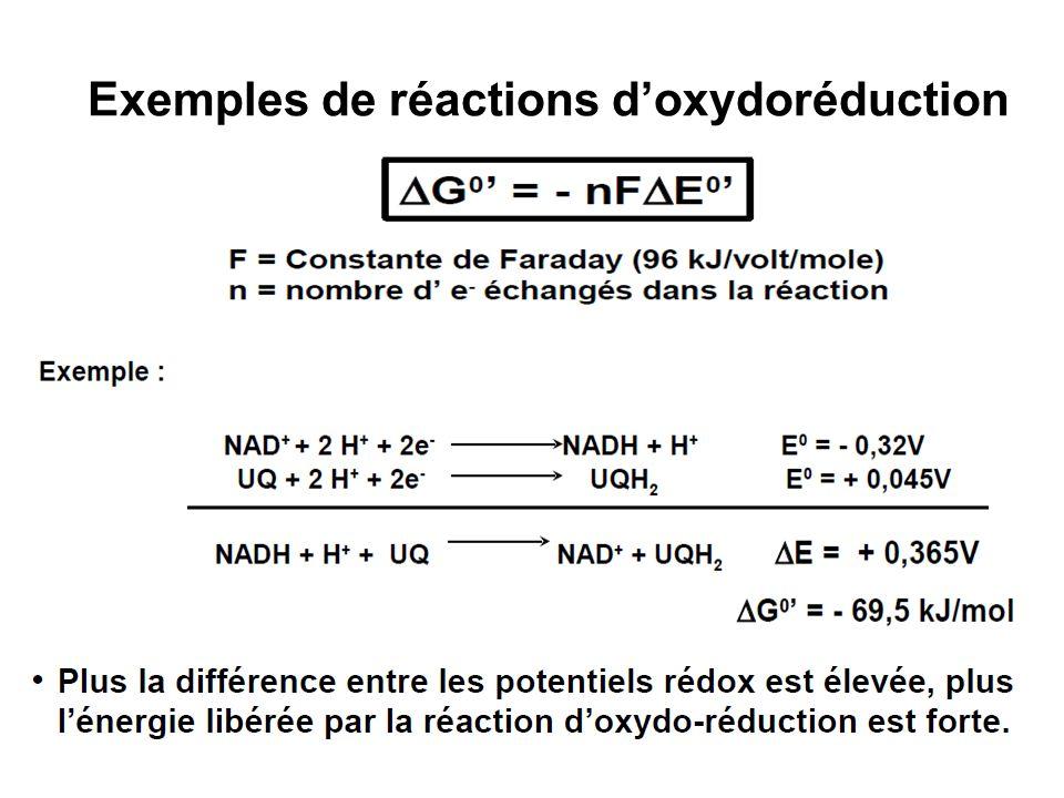 Exemples de réactions d'oxydoréduction