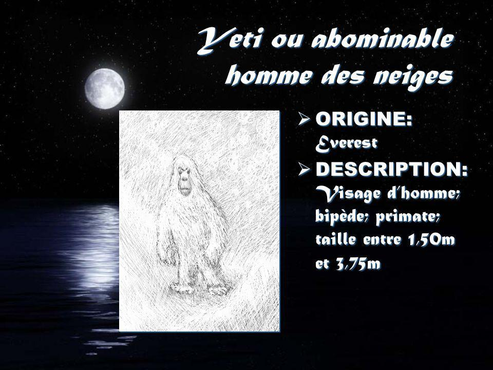 Yeti ou abominable homme des neiges