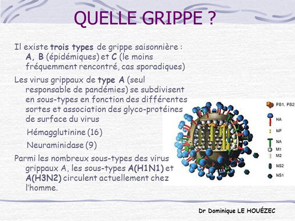 QUELLE GRIPPE Il existe trois types de grippe saisonnière : A, B (épidémiques) et C (le moins fréquemment rencontré, cas sporadiques)