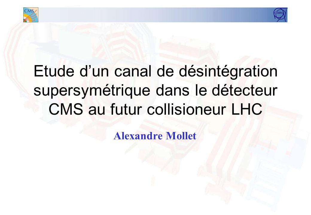 Etude d'un canal de désintégration supersymétrique dans le détecteur CMS au futur collisioneur LHC