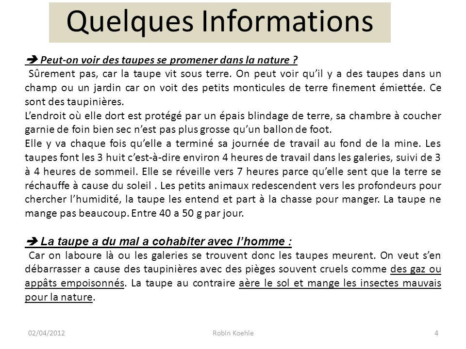 Quelques Informations