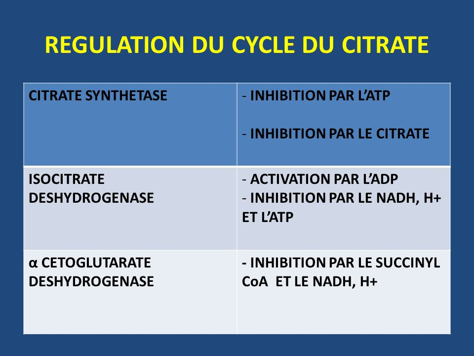REGULATION DU CYCLE DU CITRATE