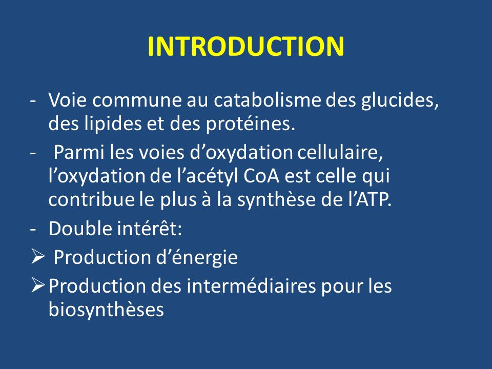 INTRODUCTION Voie commune au catabolisme des glucides, des lipides et des protéines.