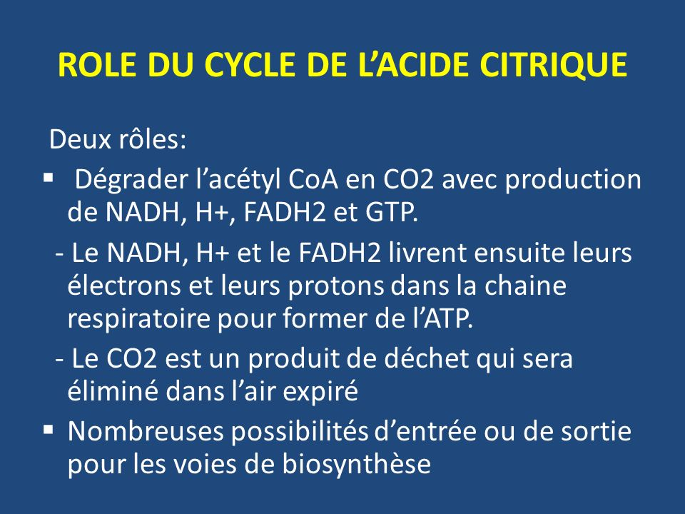 ROLE DU CYCLE DE L'ACIDE CITRIQUE