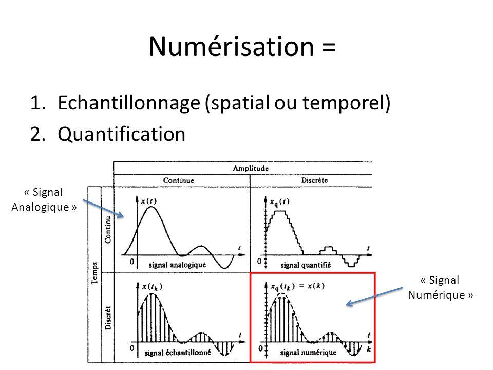 Numérisation = Echantillonnage (spatial ou temporel) Quantification
