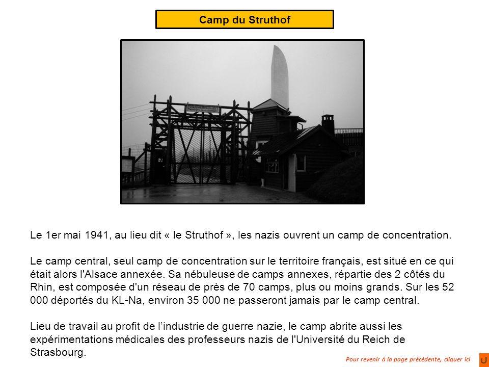 Camp du Struthof Le 1er mai 1941, au lieu dit « le Struthof », les nazis ouvrent un camp de concentration.