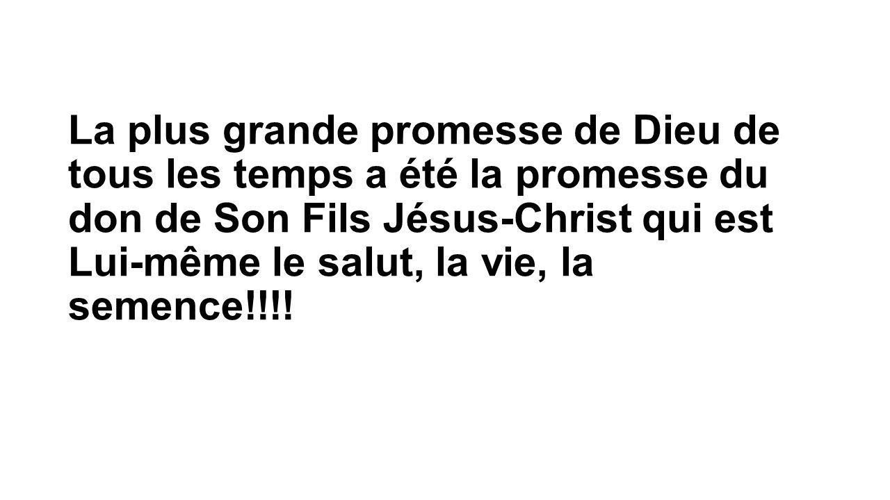 La plus grande promesse de Dieu de tous les temps a été la promesse du don de Son Fils Jésus-Christ qui est Lui-même le salut, la vie, la semence!!!!