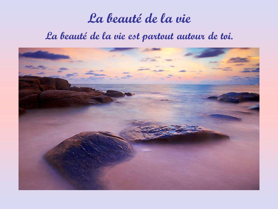 La beauté de la vie est partout autour de toi.