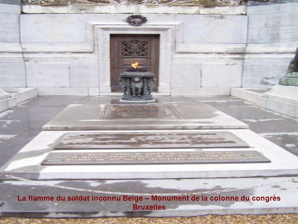 La flamme du soldat inconnu Belge – Monument de la colonne du congrès Bruxelles