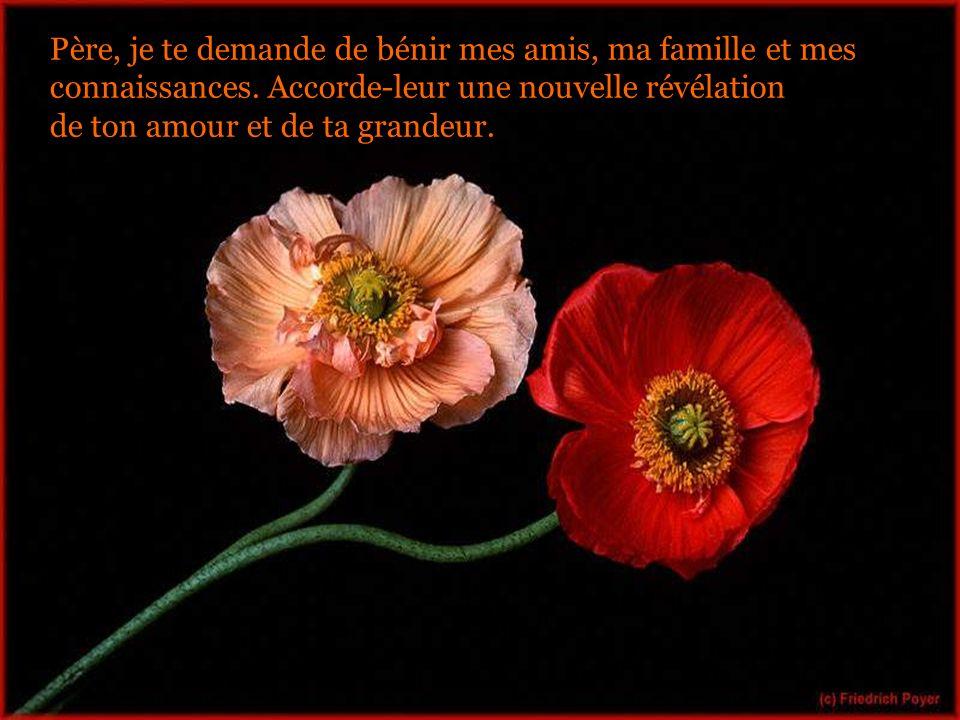 Père, je te demande de bénir mes amis, ma famille et mes