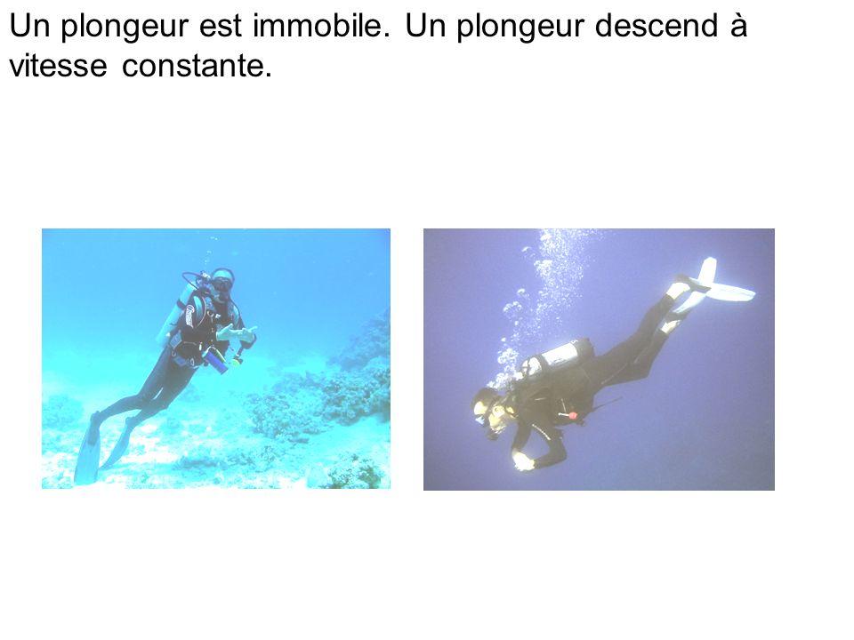 Un plongeur est immobile. Un plongeur descend à vitesse constante.