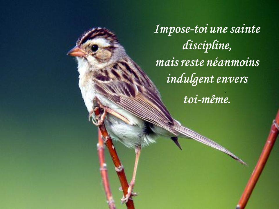 Impose-toi une sainte discipline, mais reste néanmoins indulgent envers toi-même.