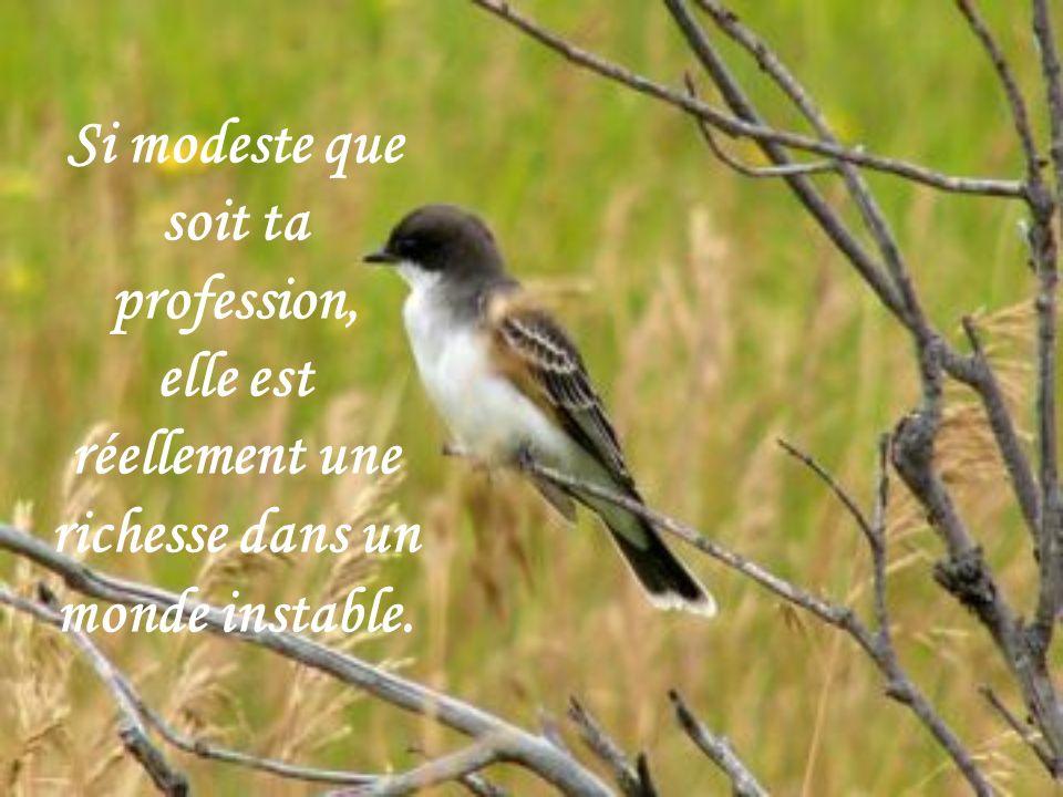 Si modeste que soit ta profession, elle est réellement une richesse dans un monde instable.