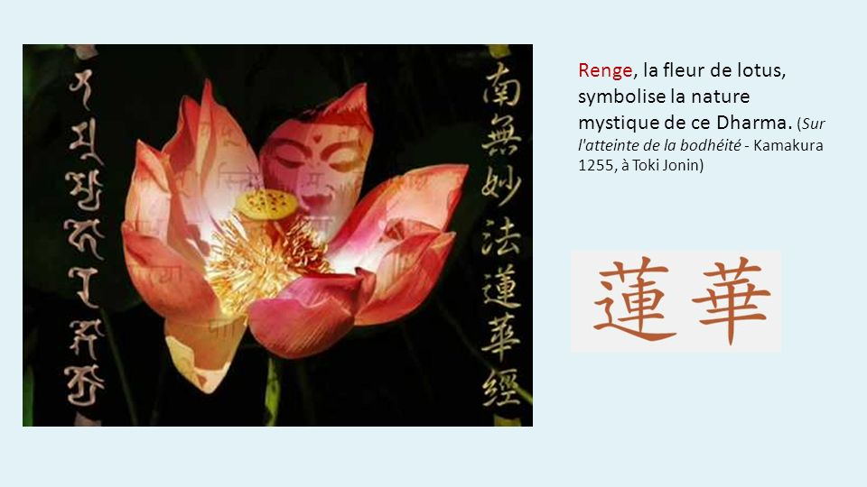 Renge, la fleur de lotus, symbolise la nature mystique de ce Dharma