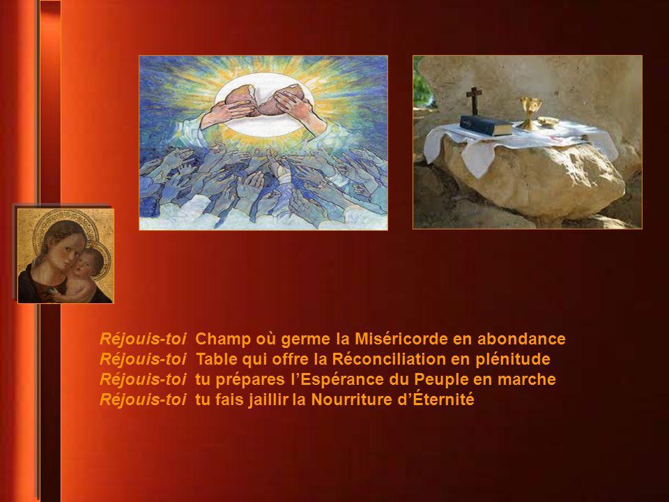Réjouis-toi Champ où germe la Miséricorde en abondance