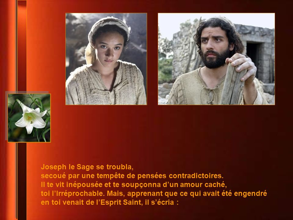 Joseph le Sage se troubla,