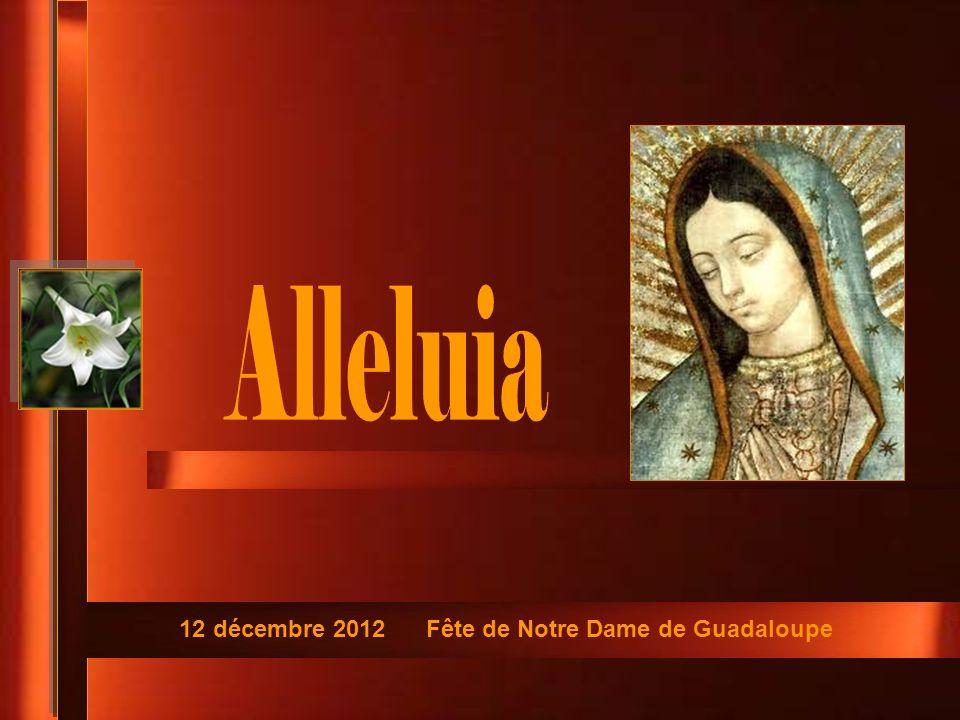 12 décembre 2012 Fête de Notre Dame de Guadaloupe