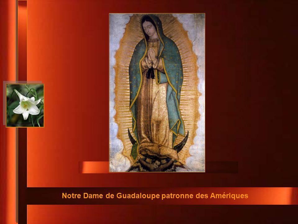 Notre Dame de Guadaloupe patronne des Amériques