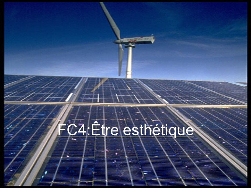 FC4:Être esthétique