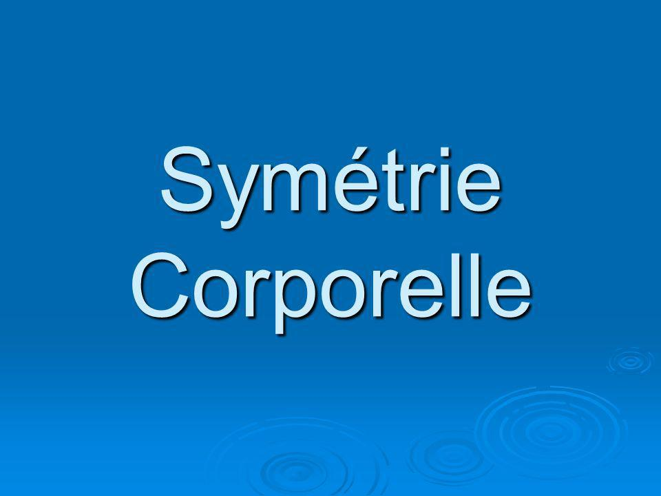 Symétrie Corporelle